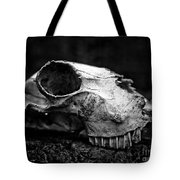 Animal Skull Tote Bag