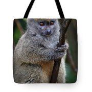 Animals 21 Tote Bag