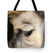Animals Can Be Beautiful Tote Bag