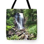Anna Ruby Falls - Georgia - 2 Tote Bag