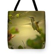 Rufus  Humming Bird  Tote Bag