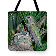 Annas Hummingbird With Young Tote Bag