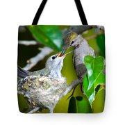 Annas Hummingbirds At Nest Tote Bag