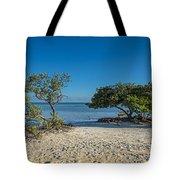 Annes Beach Tote Bag