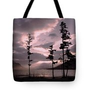 Anniversary Afternoon Tote Bag