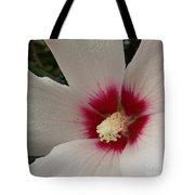 Ann's Favorite Tote Bag by Annette Allman