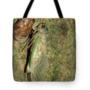 Annual Cicada Tote Bag