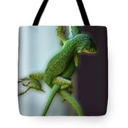 Anole Lovers Tote Bag