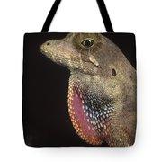 Anolis Lizard Portrait Peru Tote Bag