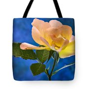 Another Beautiful Rose Tote Bag
