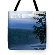 Another Denali View  Tote Bag