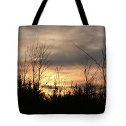Another Dusk Tote Bag