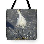 Another Flying Fish Tote Bag