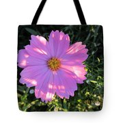 Another New And Bigger Pink Tote Bag