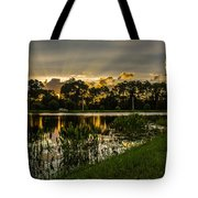Another Sun Tote Bag