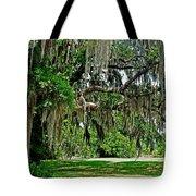 Savannah National Wildlife Refuge Tote Bag