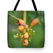 Ant On Plant Tote Bag