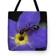 Ant With Pollen Enters Alpine Tote Bag