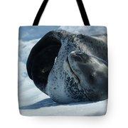 Antarctic Leopard Seal On Iceberg Tote Bag