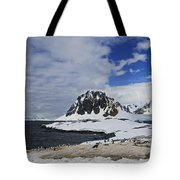 Antarctic Wilderness... Tote Bag