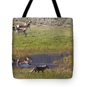 Antelope   Duck   And Coyote Tote Bag
