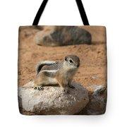 Antelope Ground Squirrel Tote Bag