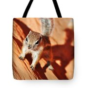 Antelope Ground Squirrel Tote Bag