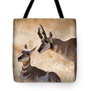 Antelope Love Tote Bag