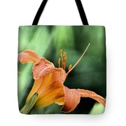 Anthers Aglow Tote Bag