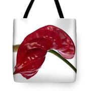 Anthurium - Backward Glance Tote Bag