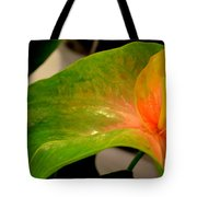 Anthurium In Red And Green Tote Bag