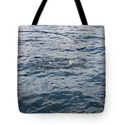 Anticapation Of The Unknown Tote Bag