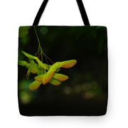 Anticipating Launch Tote Bag