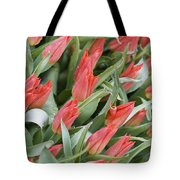 Anticipation Tote Bag by Juli Scalzi