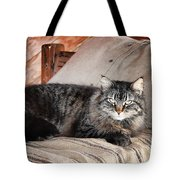Antiquity Kitty Tote Bag