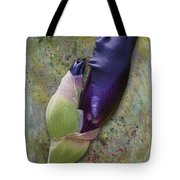 Any Day Now Tote Bag