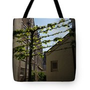 Any Space Can Be A Garden - Creative Urban Gardening From Amsterdam Tote Bag