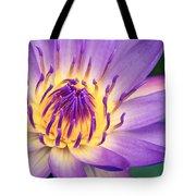 Ao Lani Heavenly Light Tote Bag