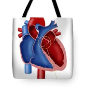 Aortic Valve Tote Bag