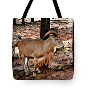 Aoudad Plus 2 Tote Bag