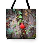 Appalachian Cardinal Tote Bag