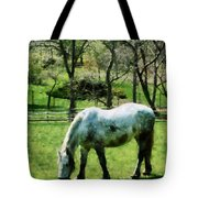 Appaloosa In Pasture Tote Bag