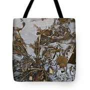 Apparitions On Ice Tote Bag