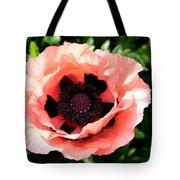 Appealing Pink Poppy Tote Bag