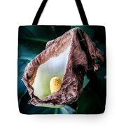 Appease Smile Tote Bag