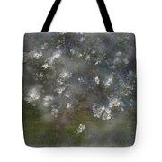 Appelblossoms Tote Bag