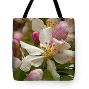 Apple Blooms Tote Bag