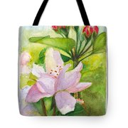 Apple Blossom And Buds Tote Bag