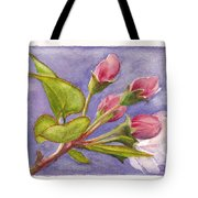 Apple Blossom Buds Tote Bag