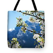 Apple Blossoms Frame The Rockies Tote Bag